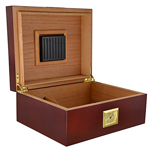 La Cubana Cherry Wood Cigar Humidor Review