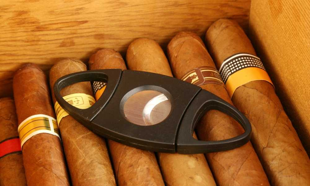 Best Cigar Cutter & Accessories Reviews cigarcutterexpert.com