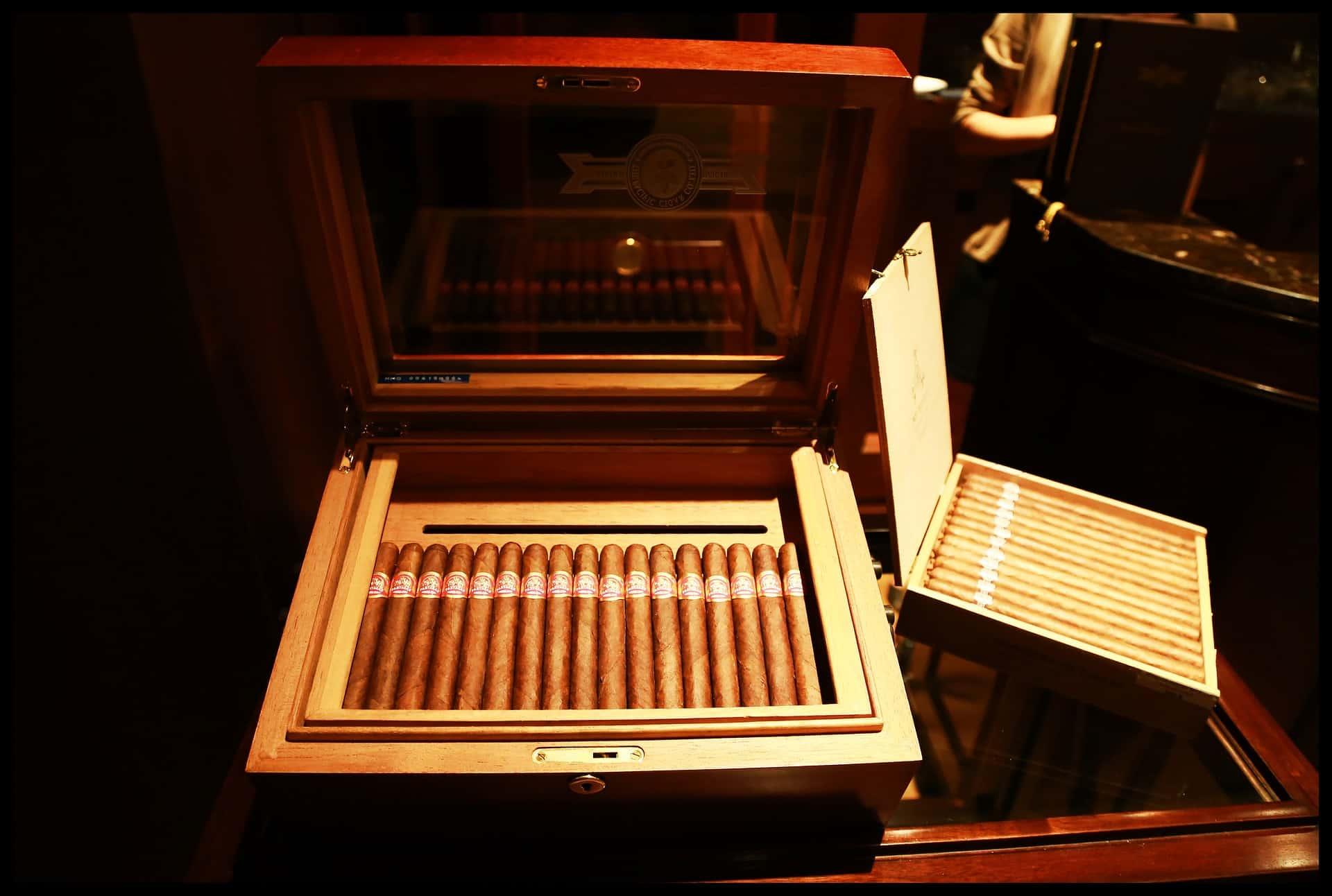 Best Cigar Humidor