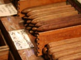 cigars in bulk