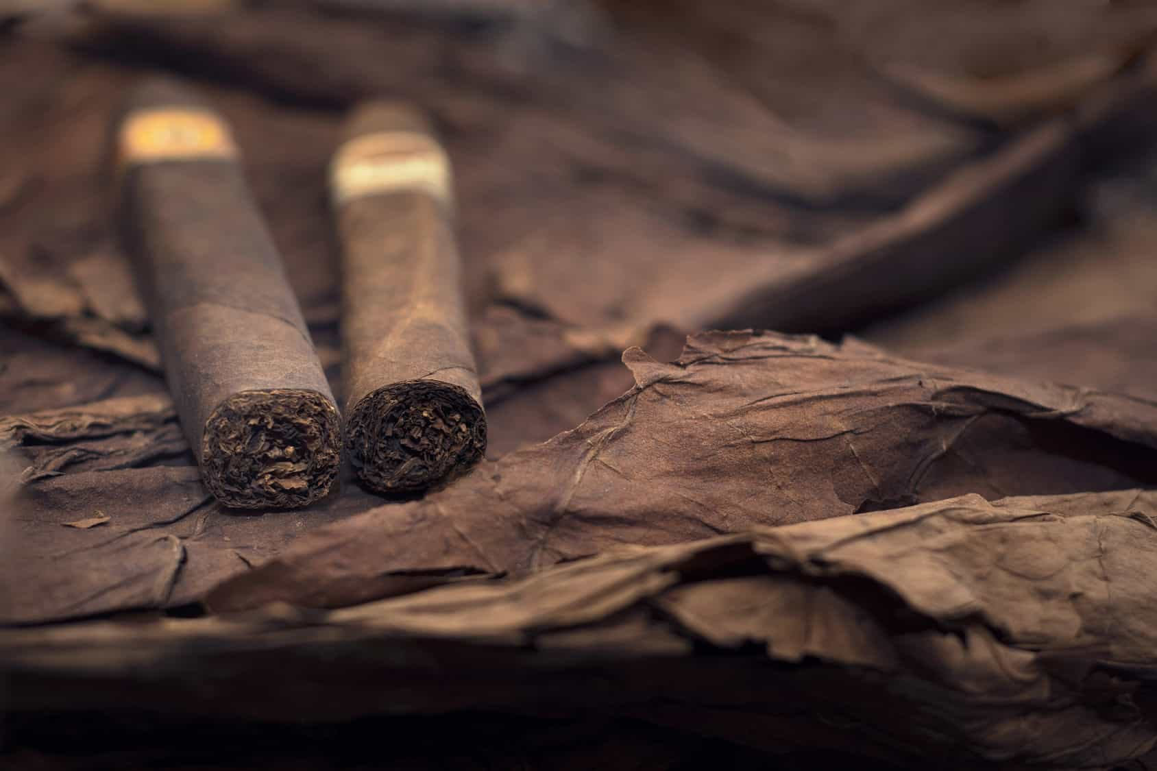 group of cigars