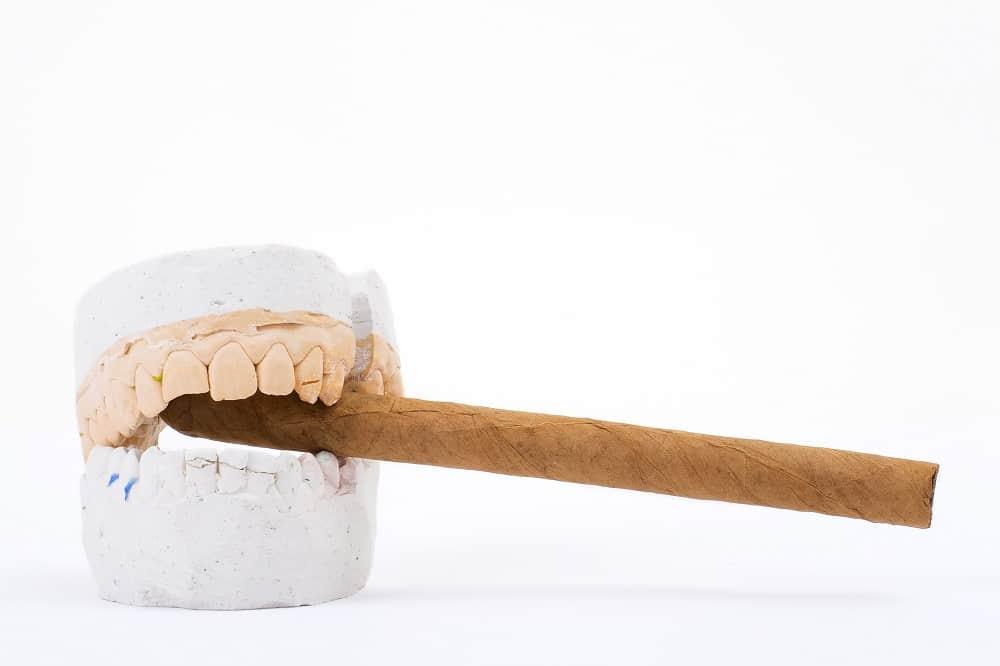 teeth plaster cast with cigar