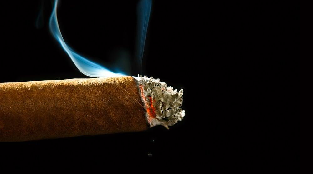 One smoking burning cigar with ashes